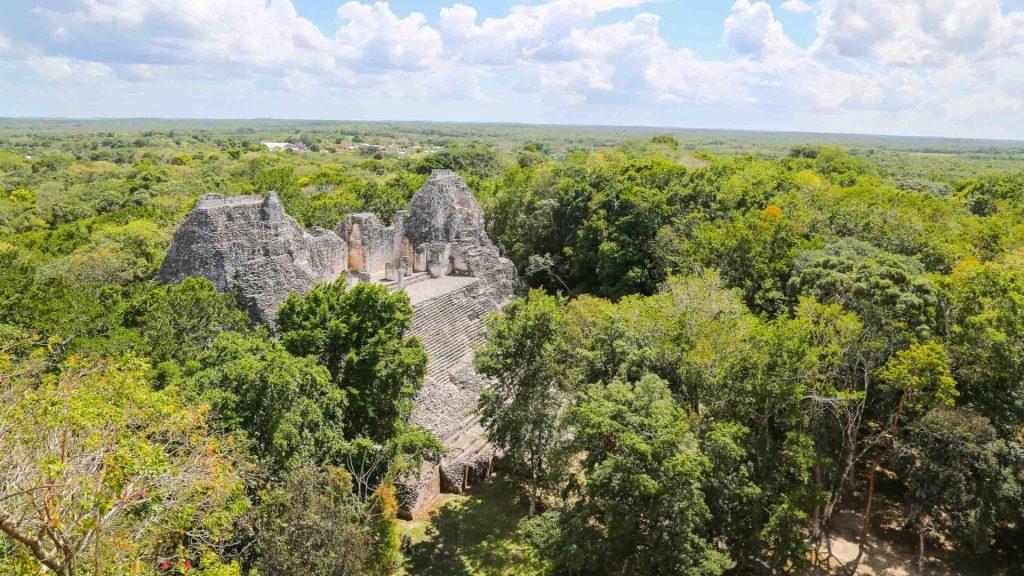 Yucatán's precious jungle