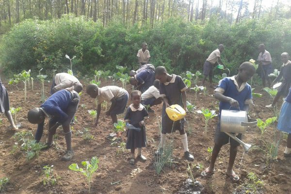 wable-children-planting